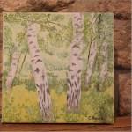 WhiteTrees11